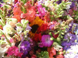 flowers6-12-06-2