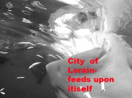 citylorain feeds
