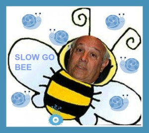slow go bee