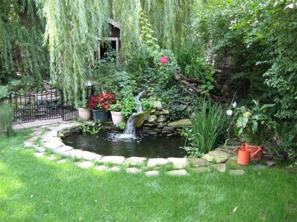 Ghost koi that woman 39 s weblog for Pond shade ideas