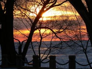 Lake View Park  Mark Teleha