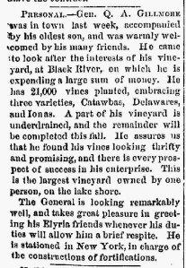 NEWS-OH-EL_IN_DE.1867_08_07_0003
