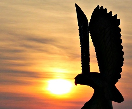 sunset-silhouette-erics-eagle-settlers-watch