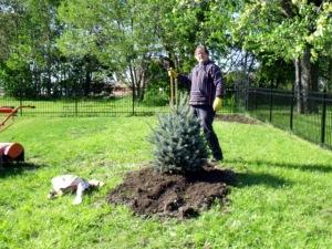 May2010 Gabe Tree 118
